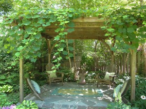 Pergola inscribed with George Washington Carver quote When I touch a Flower I am touching infinity, in garden of designer Linda Wiggen Kraft
