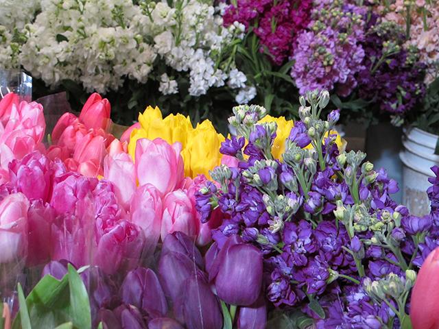 valentine-tulips-stocks-photo-linda-wiggen-kraft-blog