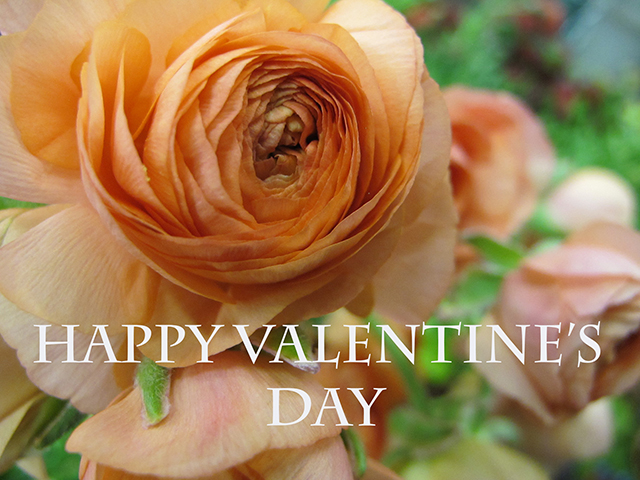 valentine-words-photo-linda-wiggen-kraft-blog