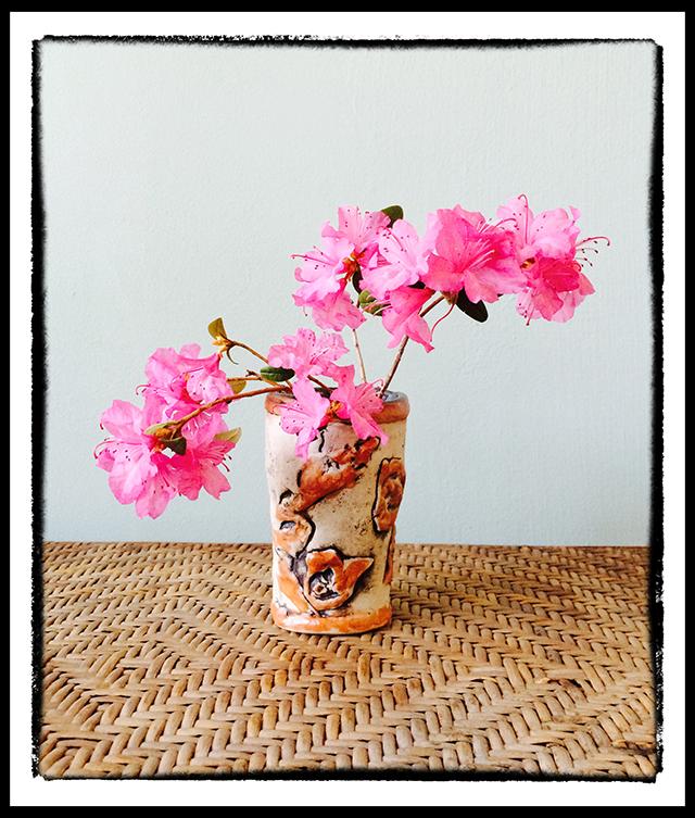 in-my-garden-4-15-14-early-azaleas-blog-linda-wiggen-kraft-blog