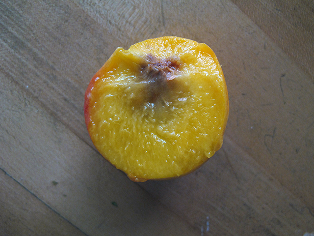 nectarine-juicy-blog-creativity-for-the-soul-photo-linda-wiggen-kraft-blog