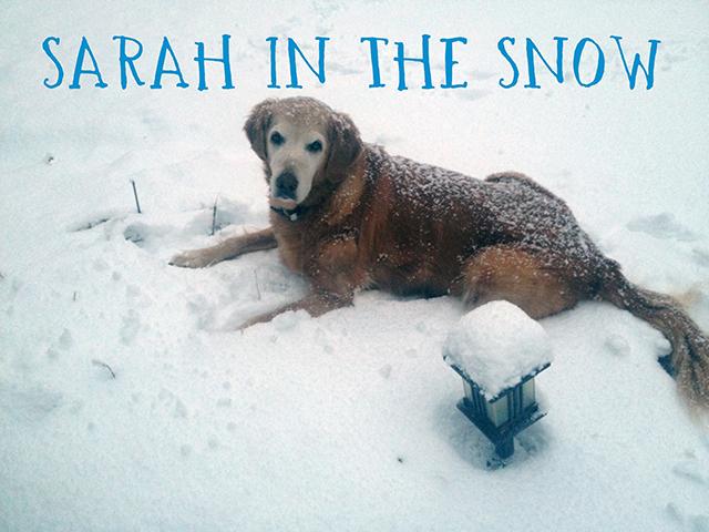sarah-snow-blog-creativity-for-the-soul-linda-wiggen-kraft-blog