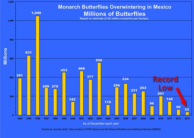 population_estimate_millions-monarchs-blog-creativity-for-the-soul-blog