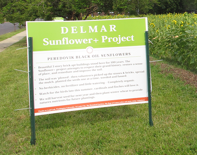 sunflower-project-delmar-sign-blog-creativity-for-the-soul-blog
