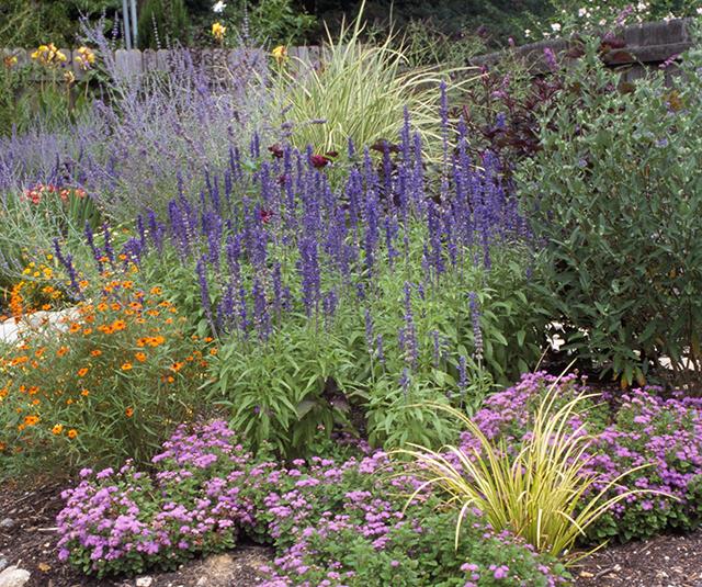 garden-designed-by-linda-wiggen-kraft-clayton-blog-creativity-for-the-soul-blog