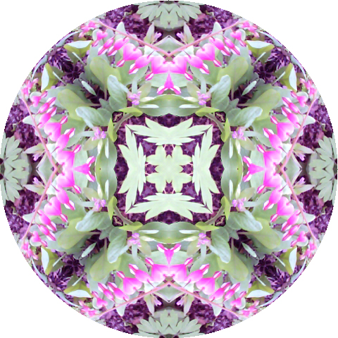 mandala-bleeding-hearts-blog-creativity-for-the-soul