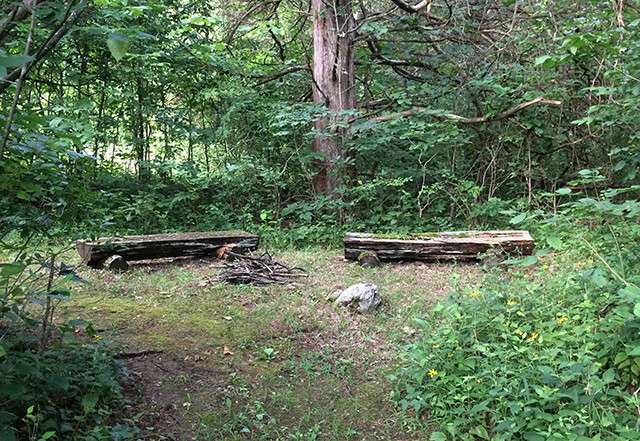 benches-in-woods-earth-mirrors-blog-creativity-for-the-soul-blog