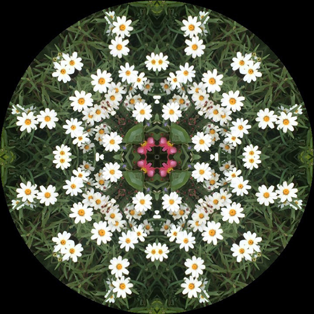 earth-flowers-kaleidagram-blog-creativity-for-the-soul