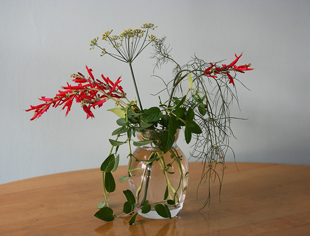 flower-vase-dill-red-salvia-blog-creativity-for-the-soul-blog