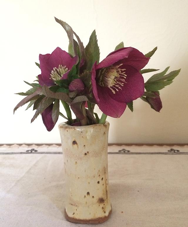 flower-vase-helleborus-dark-blog-creativity-for-the-soul-blog