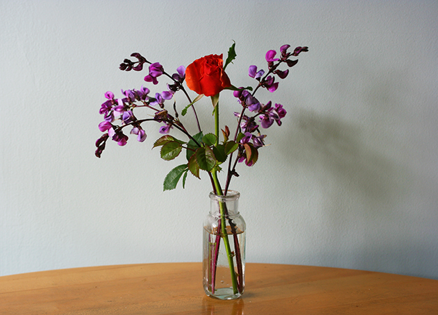 flower-vase-rose-hyacinth-bean-blog-creativity-for-the-soul-blog