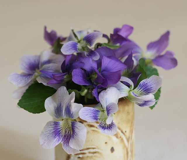 flower-vase-violet-blog-creativity-for-the-soul-blog