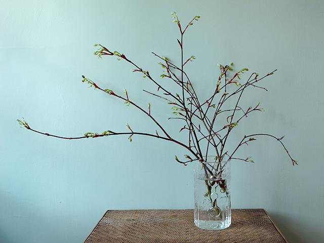 flower-vases-branches-blog-creativity-for-the-soul-blog