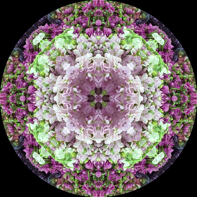 flower-mandala-stocks-circle-blog-creativity-for-the-soul-blog