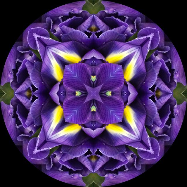 flower-mandalas-circle-iris-blog-creativity-for-the-soul-blog