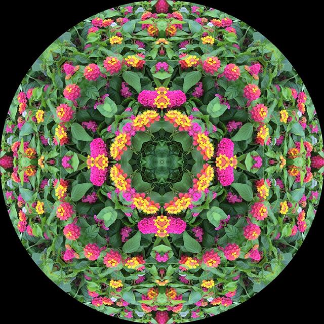 driveway-mandala-11-blog-creativity-for-the-soul-blog