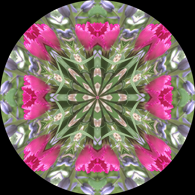 driveway-mandala-12-blog-creativity-for-the-soul-blog
