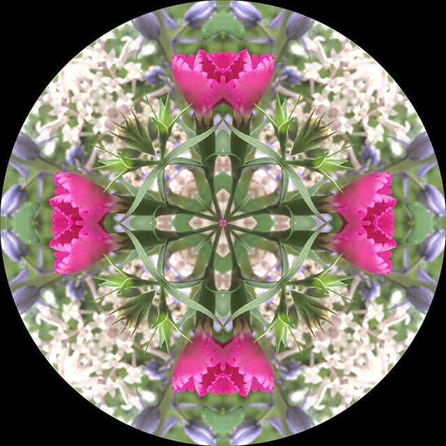 driveway-mandala-14-blog-creativity-for-the-soul-blog