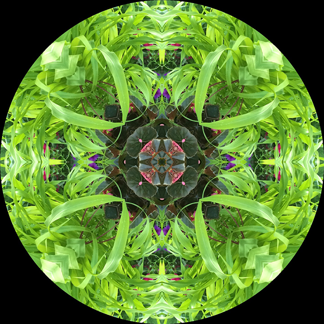 driveway-mandala-8-blog-creativity-for-the-soul-blog