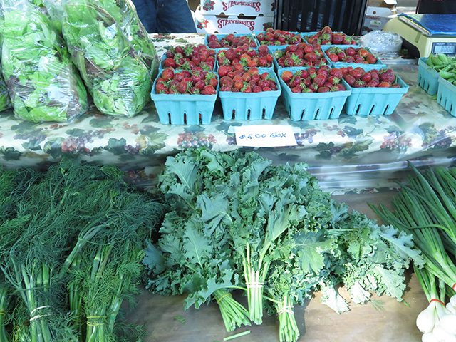 madison-farmers-market-produce-1-blog-creativity-for-the-soul-blog