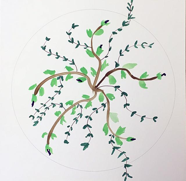 mandala-martha-leaves-blog-creativity-for-the-soul-blog