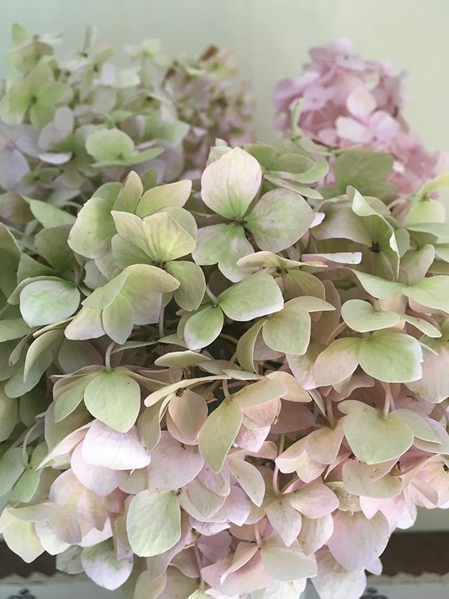 flowers-in-vase-7-detail-blog-creativity-for-the-soul-blog