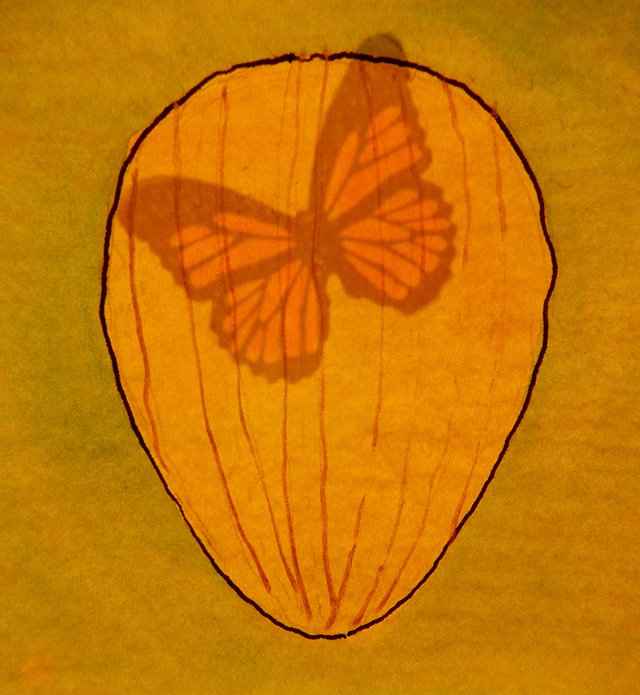 monarch-book-luminous-blog-creativity-for-the-soul-blog