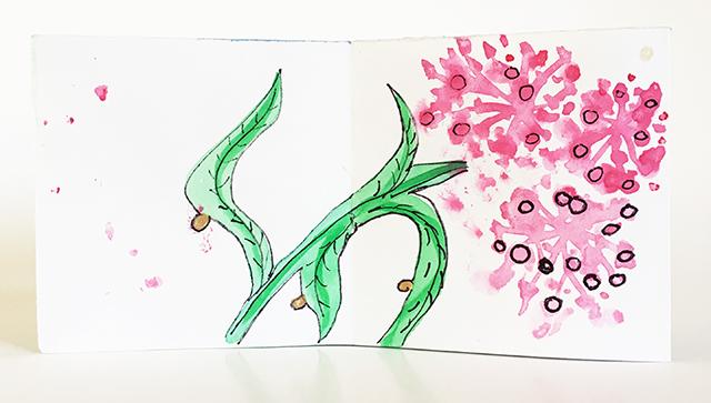 monarch-book-milkweed-full-bloom-blog-creativity-for-the-soul-blog