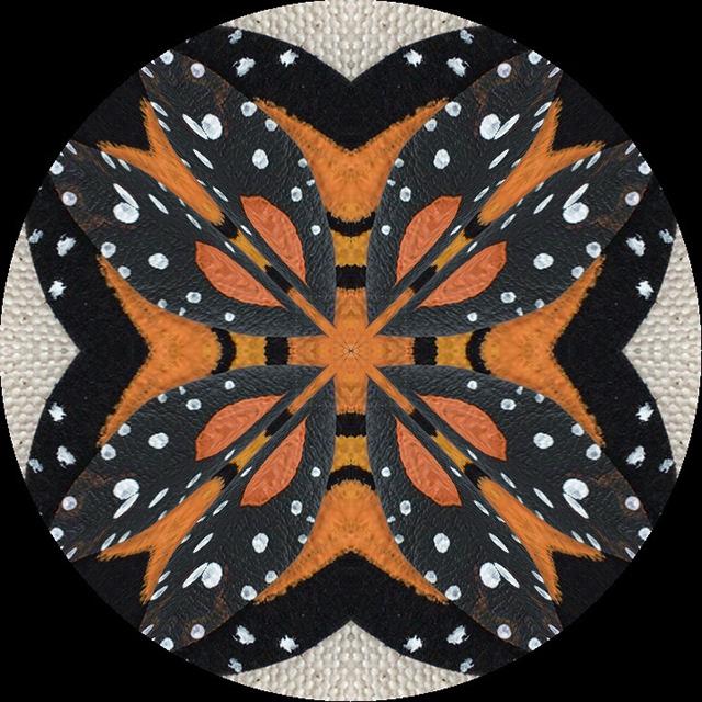 monarch-mandalas-2-blog-creativity-for-the-soul-blog