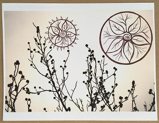mandala-truth-trees-4-blog-creativity-for-the-soul-blog
