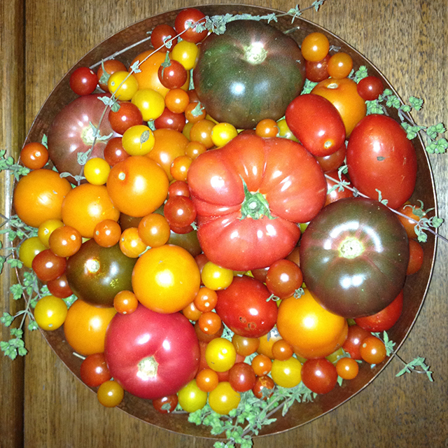 tomato-mandala-linda-wiggen-kraft-blog-creativity-for-the-soul-blog