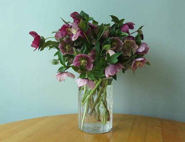 flower-freeze-hellebores-vase-1-blog