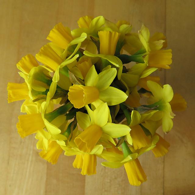 flower-freeze-mandala-blog-creativity-for-the-soul-blog