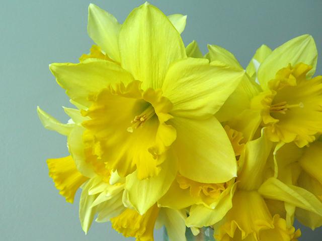 flower-freeze-vase-3-closeup-blog-creativity-for-the-soul-blog