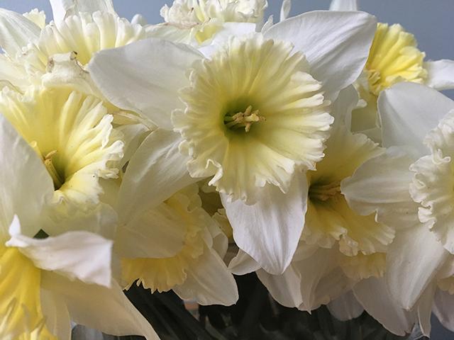 flower-freeze-vase-4-closeup-blog-creativity-for-the-soul-blog