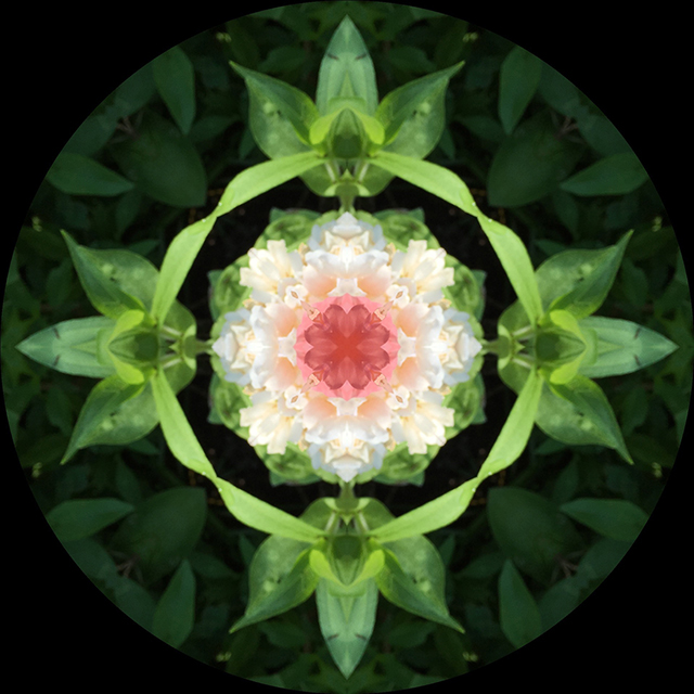 flower-mandalas-kaleidagram-3-blog-creativity-for-the-soul