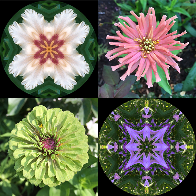 garden-mandalas-feature-blog-creativity-for-the-soul