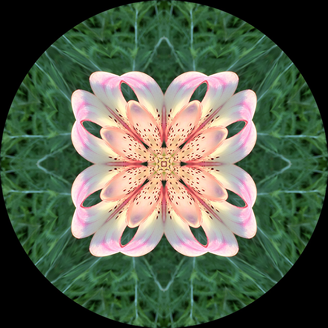 garden-mandalas-kaleidagram-10-blog-creativity-for-the-soul
