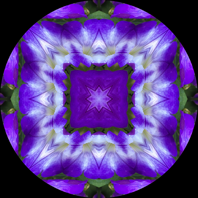 garden-mandalas-kaleidagram-7-blog-creativity-for-the-soul-blog