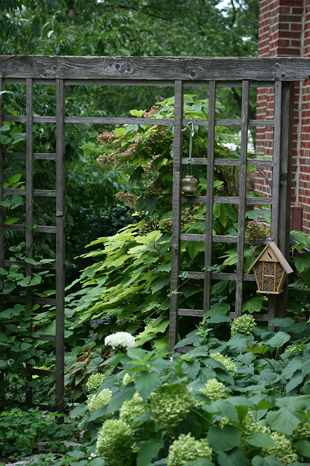 garden-to-be-trellis-blog-creativity-for-the-soul-blog