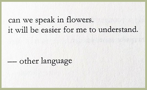 can-we-speak-in-flowers-nayyirah-waheed-blog-creativity-for-the-soul