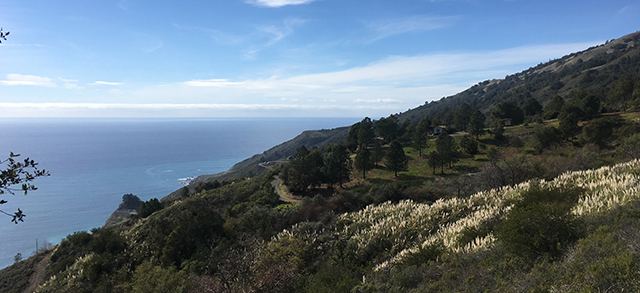 big-sur-hermitage-cottage-hill-blog-creativity-for-the-soul copy