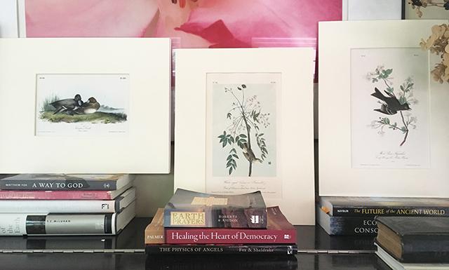 audubon-prints-3-on-piano-blog-creativity-for-the-soul-blog